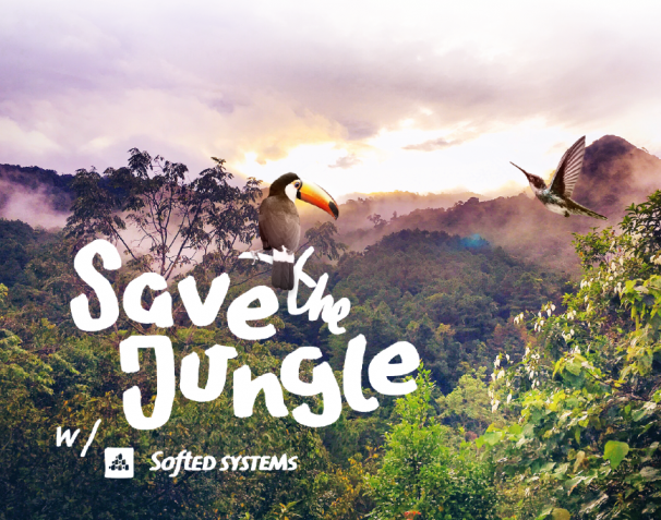Save the jungle – Die SoftEd Sommer Spendenaktion 1